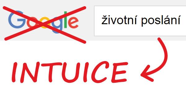 Životní poslání - google